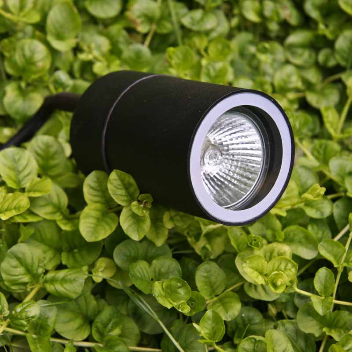KS Verlichting - KS LED Pin - Tuinspot | Nostalux.nl